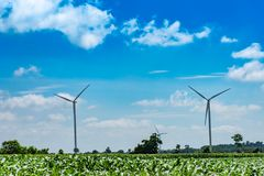 Wind turbines generate electricity on the corn field at Chaiyaphum. stock images