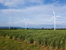 Wind turbines generating electricity. energy conservation concept royalty free stock images