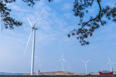 The wind turbines generating electricity farm with the blue sky cloud background and the pine branches leaves foreground. The wind turbines generating Stock Photos
