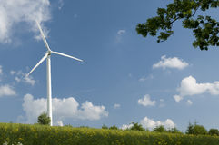 Wind turbines generating power. Wind turbines in Poland on canola field royalty free stock photography