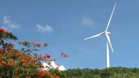 """Wind turbines generator running by the wind with a tree underneath. Thai Language it mean """"Electricity Generating Authority"""