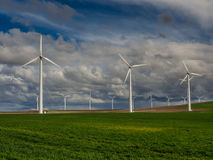 Wind turbines and a grassy field Stock Photos