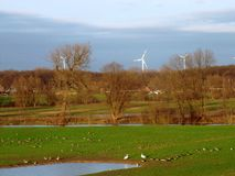 Wind turbines in green environment Stock Photography