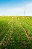 Wind turbines green field Royalty Free Stock Photography