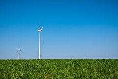 Wind Turbines on green field and blue sky Stock Image