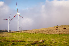 Wind turbines. Green hills with a line of wind turbines Royalty Free Stock Photo