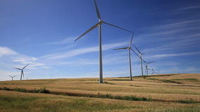 Wind turbines on green meadow. Facinas, Cadiz, Spain stock footage