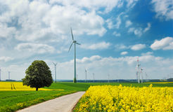 Wind turbines in green meadows Royalty Free Stock Image