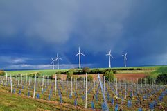 Landscape of vineyards and wind turbines royalty free stock photos