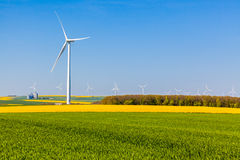 Wind turbines in green and yellow fields Royalty Free Stock Photo