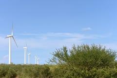 Wind turbines on the Guajira Peninsula. Reception of electric energy on the Guajira Peninsula Stock Image