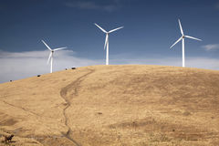 Wind Turbines on a Hill With Cows. Wind turbines on a hill, with cows grazing and pretty clouds in the sky Royalty Free Stock Photography