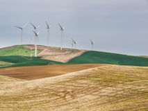 Wind turbines on the hill tops with wheat fields Royalty Free Stock Photo