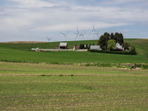 Wind turbines on the hill tops with wheat fields Stock Photo