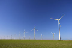 Wind turbines in Holland Royalty Free Stock Image