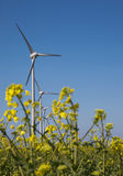 Wind turbines in lincolnshire Stock Image