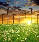 Wind turbines on meadow Royalty Free Stock Photos