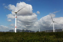 Wind turbines in Mexico Stock Images