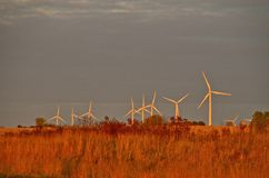 Wind turbines in the morning Royalty Free Stock Image