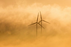 Wind turbines in morning light Stock Photography