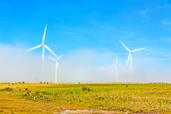 Wind turbines in natural green landscape - blue sky Stock Images