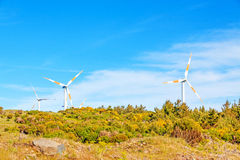 Wind turbines in natural green landscape - blue sky Royalty Free Stock Photo