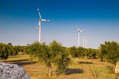 wind turbines and olive trees stock image