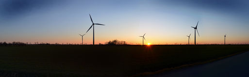 Wind turbines  panorama. Sunset evening Royalty Free Stock Images