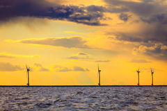 Wind turbines power generator farm along coast sea. Wind turbines power generator farm for renewable energy production along coast baltic sea near Denmark at Stock Image