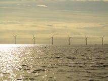Wind turbines power generator farm in sea. Wind turbines power generator farm for renewable energy production along coast baltic sea near Denmark at sunset / Stock Image