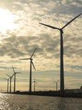 Wind turbines power generator farm in sea. Wind turbines power generator farm for renewable energy production along coast baltic sea near Denmark at sunset / Stock Photos