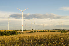 Wind turbines, pure energy,windmills in the fields Royalty Free Stock Photo
