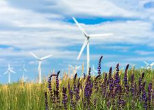 Green energy from wind Stock Photo