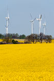 Wind turbines and rape field Stock Photos