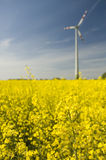 Wind turbines and rapeseed fie Stock Images