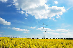 Wind turbines among rapeseed field Royalty Free Stock Photos