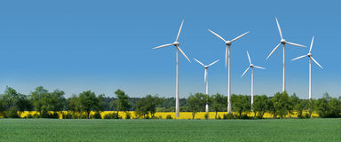 Wind turbines in a rapeseed field behind an alley Royalty Free Stock Photos