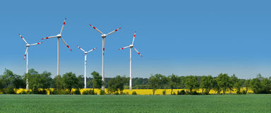 Wind turbines in a rapeseed field behind an alley Stock Photo