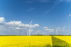 Wind turbines in a rapeseed field with blue cloudy sky. Wind turbines in a rapeseed field with blue sky and clouds Stock Photos