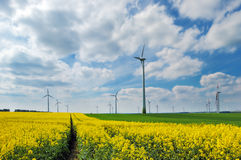 Wind turbines among rapeseed field and meadows Royalty Free Stock Images
