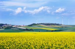 Wind turbines among rapeseed fields and colorful meadows royalty free stock images