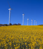 Wind turbines and rapeseed fields Olkoz. Royalty Free Stock Photography