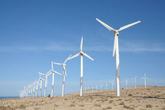 Wind turbines for renewable energy. Canary Island Fuerteventura Royalty Free Stock Photography