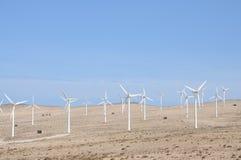 Wind turbines for renewable energy. Canary Island Fuerteventura Stock Photography
