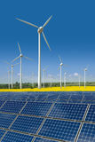 Wind turbines and solar panels in a rapeseed field Royalty Free Stock Photo