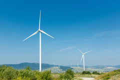 Wind turbines standing on a heels among fields Stock Image