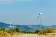 Wind turbines standing on a heels among fields Stock Images