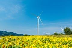 Wind turbines standing in sunflower field Stock Photos
