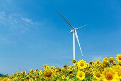 Wind turbines standing in sunflower field Stock Photography