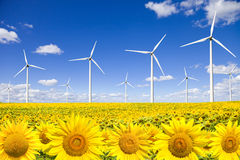 Wind turbines on sunflowers field. Against a blue sky. Clean energy concept Stock Photos